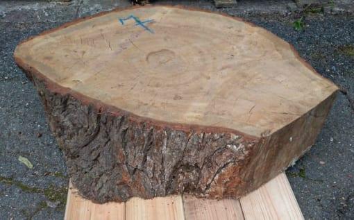 Kolečko - dubové, 62 cm