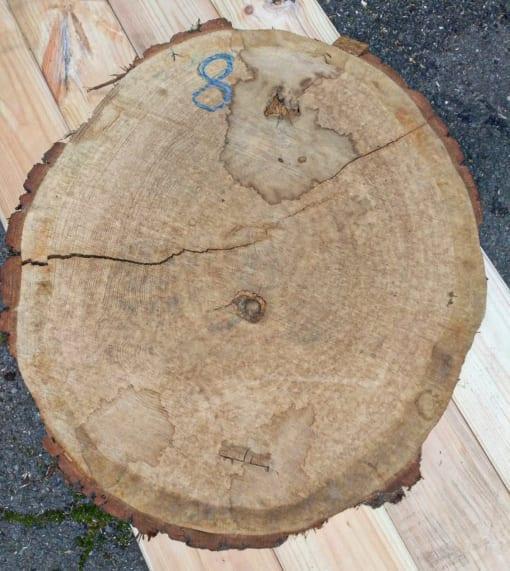 Kolečko - dubové, 59 cm
