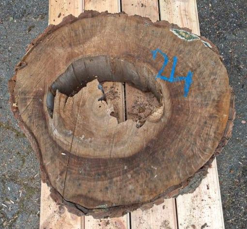 Kolečko - ořechové, 50 cm