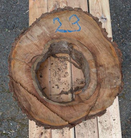 Kolečko - ořechové, 53 cm