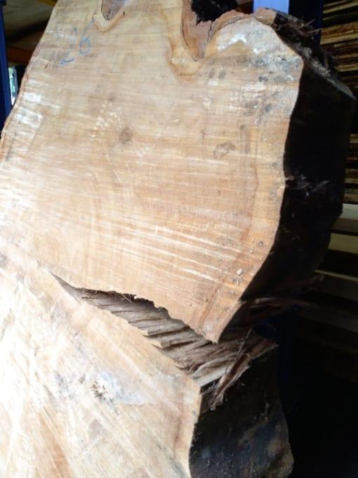 Stolová deska - topol, 120 cm