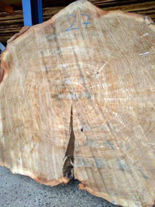 Stolová deska - topol, 125 cm